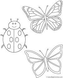 two butterflies and ladybug coloring page insects