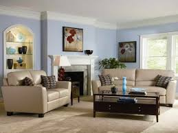 Light Blue Walls Design Ideas by Light Blue Living Room Leather Couch Interior Design