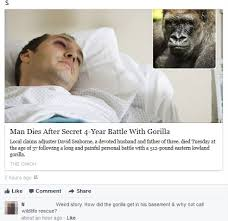 Claims Adjuster Meme - if you engage gorillas in combat you re going to have a bad time