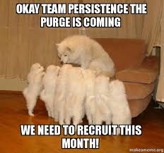 Purge Meme - okay team persistence the purge is coming we need to recruit this