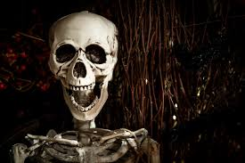 Halloween Pictures Skeletons Skeleton Hugging Bottle Of Wine Free Stock Photo Public Domain