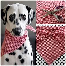 dalmatian diy easy no sew pet bandana