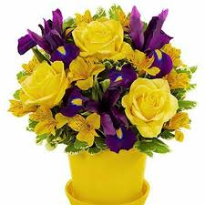 next day delivery flowers 33 best leigh s fresh fabulous same day delivery flowers images