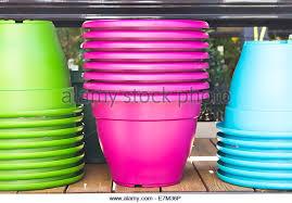 plastic plant pots stock photos u0026 plastic plant pots stock images
