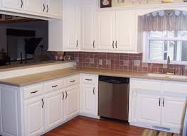Kitchen Cabinet Options Design by Kitchen Cabinet Contractor Yeo Lab Com