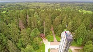 green trees surrounding the highest peak in estonia by