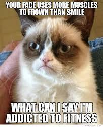 Frowning Dog Meme - grumpy cat meme weknowmemes