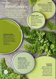 paint palette fern greens shades of greenery pinterest