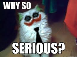 Meme Why - why so serious why so serious cat quickmeme