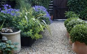 Types Of Gravel For Garden Paths Gravel Patio Query U2014 Forum Gardenersworld Com