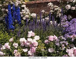 garden flower bed border stock photos u0026 garden flower bed border