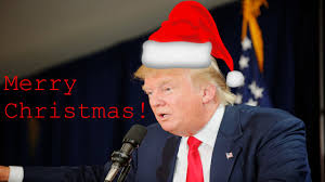 merry from donald