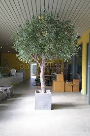 plantart large artificial variegated olive trees faux