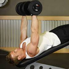 Is Decline Bench Press Necessary Decline Dumbbell Bench Press Exercise Videos U0026 Guides