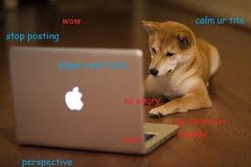 The Doge Meme - the doge meme is not funny genius