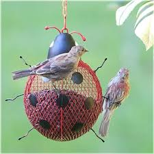 24 best new improved pet bird feeders images on