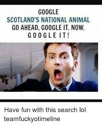 Google It Meme - google scotland s national animal go ahead google it now google it