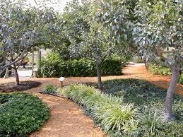 Backyard Fruit Trees Fruit Trees U2014 Loudoun County Master Gardeners