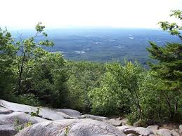 New Hampshire vegetaion images Birch beech maple monadnock mountain monadnock vegetation sugar jpg