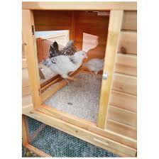 castlecreek backyard chicken coop 657324 yard u0026 garden at
