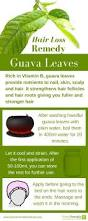 best 25 hair loss ideas on pinterest oil treatment hair hair