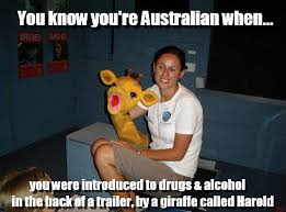 Really Funny Meme - just 100 really fucking funny memes about australia funny memes