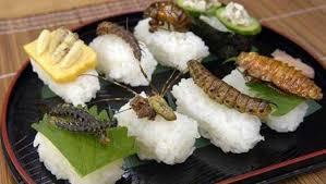 insectes dans la cuisine insectes comestibles où en acheter en ligne ou en boutique