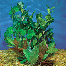 Fake Plants Artificial Aquarium Plants Hagen Marina Silk Plant Variety Pack