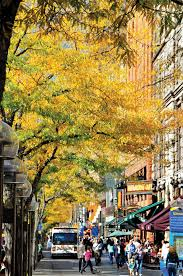 free things to do this fall in denver visit denver