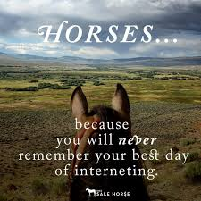 Cowgirl Memes - d073e6f44b4fbb0be8c5a0389f9be811 inspirational horse quotes cowgirl