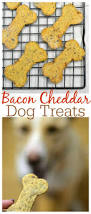homemade thanksgiving cookies best 20 recipes for dog treats ideas on pinterest diy dog