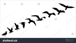 bird silhouette fly off concept vector stock vector 400227235