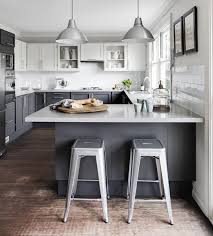 Grey Kitchens Ideas Grey And White Kitchen Rapflava
