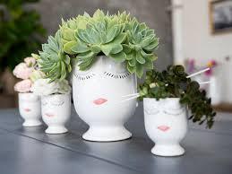 easy to grow bulbs buy flower bulbs online