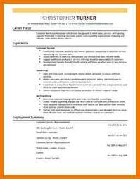 Resume Sample For Retail Sales by Fresh Essays Cv Examples Of Retail