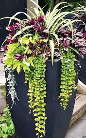 Planter Garden Ideas Planter Design Ideas Internetunblock Us Internetunblock Us