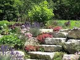 Steingarten Mit Granit Steingarten Anlegen Tipps Und Ideen Garten Mix