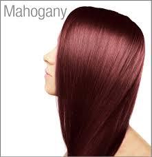 mahogany hair color chart surya henna cream hair colour semi permanent hair colour natural