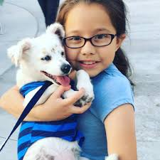 10 year old julia teaches her dog walter sign language in