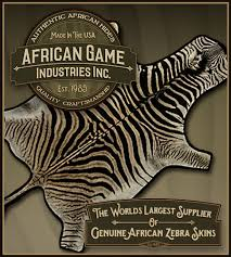 Genuine Zebra Rug African Game Industries Genuine African Zebra Skins U2013 Zebra Skin