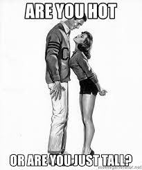 Hot Girl Meme Generator - are you hot or are you just tall tall guy short girl meme generator