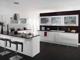 modern white kitchens with dark wood floors caruba info