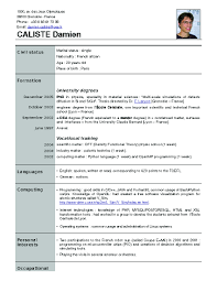 How Make Resume How To Make A Quick Resume Free Resume Example And Writing Download