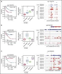 cancer specific changes in dna methylation reveal aberrant