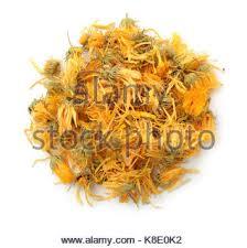 Calendula Flowers Medicinal Flowers Of A Calendula On White Background Herbal Tea