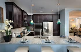 winnipeg luxury homes madison pointe the apollo dream kitchen dark cabinets