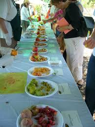 sacramento vegetable gardening frutas