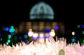 Dominion Lighting 2017 Dominion Energy Gardenfest Of Lights Giveaway Richmond Mom