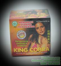 kapsul king cobra jamu kuat seks herbal tradisional alami indonesia