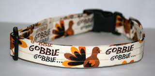 thanksgiving collar turkey gobble collar turkey